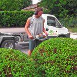 entretien-tonte-de-pelouses-dans le pays-de-gex par votre paysagiste à cessy en service à la personne